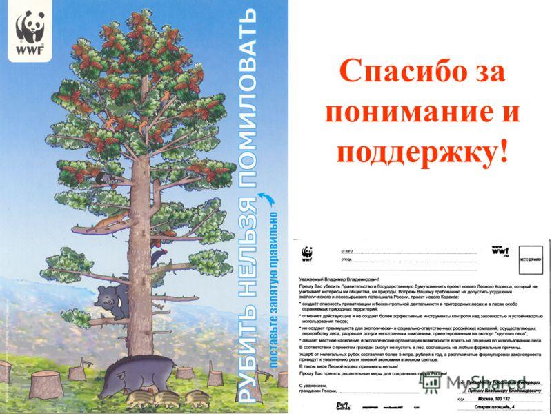 © WWF России / Владимир Филонов Спасибо за понимание и поддержку!