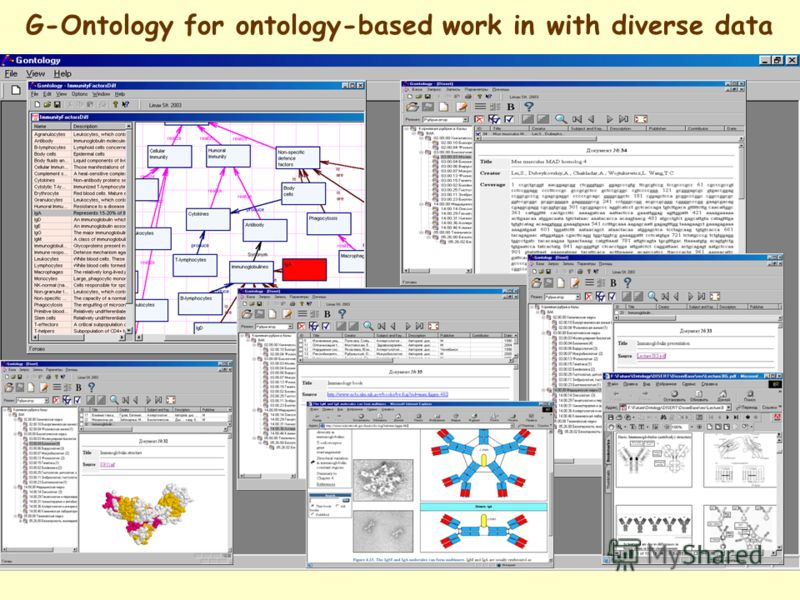 G-Ontology for ontology-based work in with diverse data
