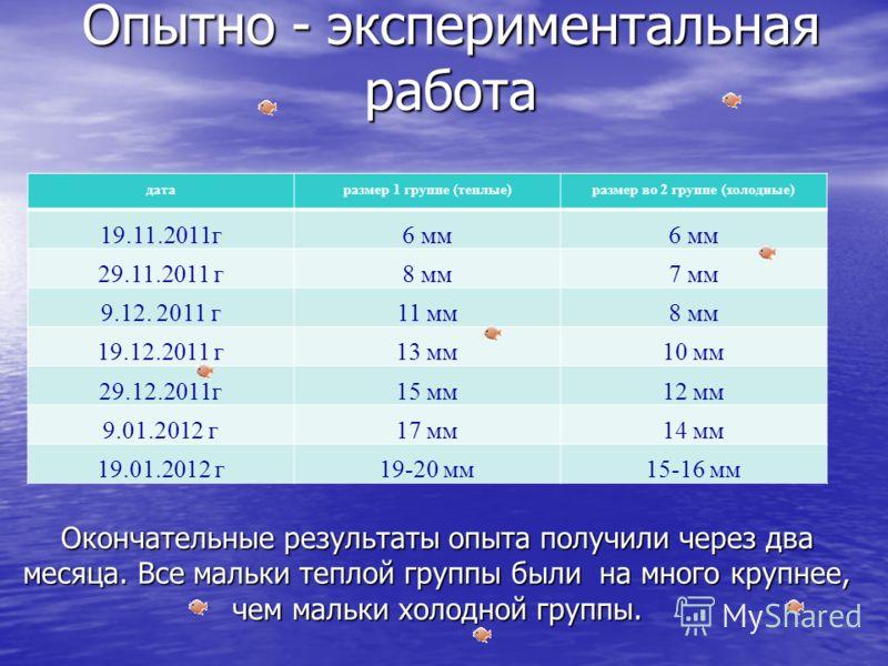 датаразмер 1 группе (теплые)размер во 2 группе (холодные) 19.11.2011г6 мм 29.11.2011 г8 мм7 мм 9.12. 2011 г11 мм8 мм 19.12.2011 г13 мм10 мм 29.12.2011г15 мм12 мм 9.01.2012 г17 мм14 мм 19.01.2012 г19-20 мм15-16 мм Опытно - экспериментальная работа Око