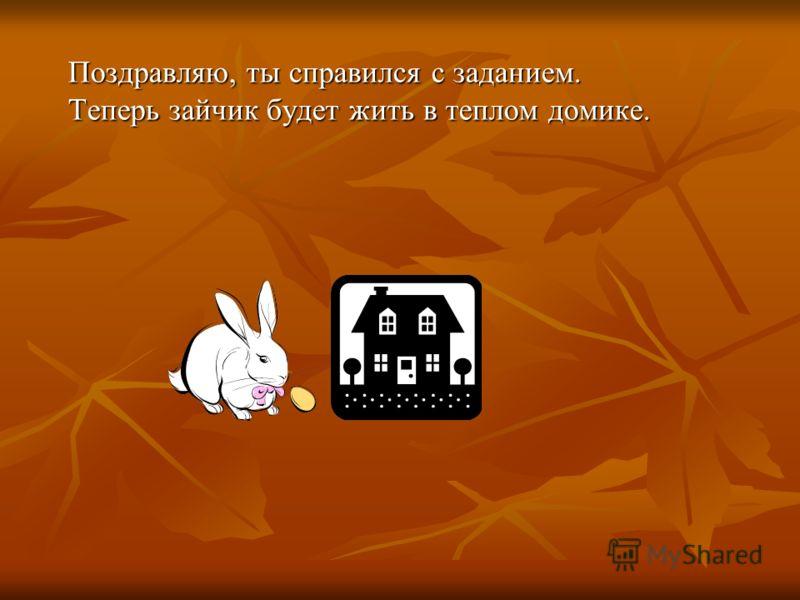 Поздравляю, ты справился с заданием. Теперь зайчик будет жить в теплом домике.