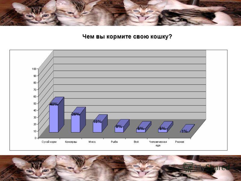Чем вы кормите свою кошку?