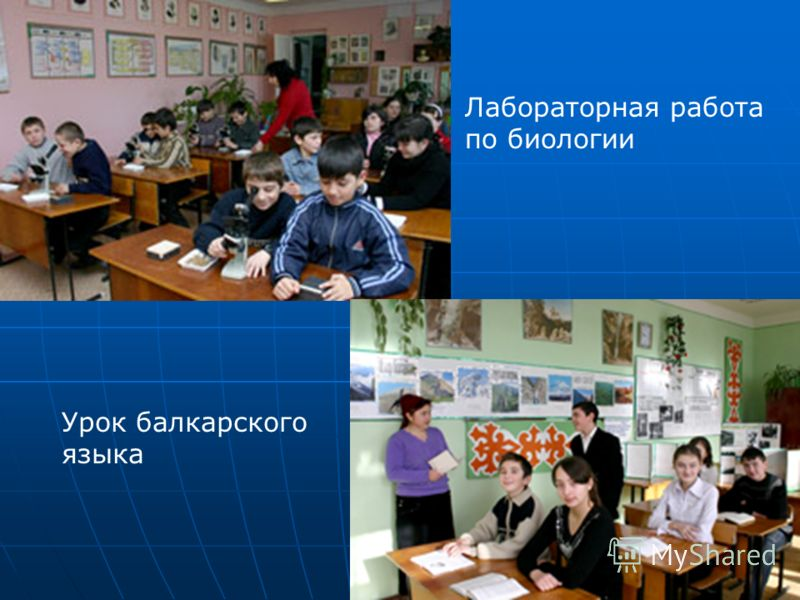 Лабораторная работа по биологии Урок балкарского языка
