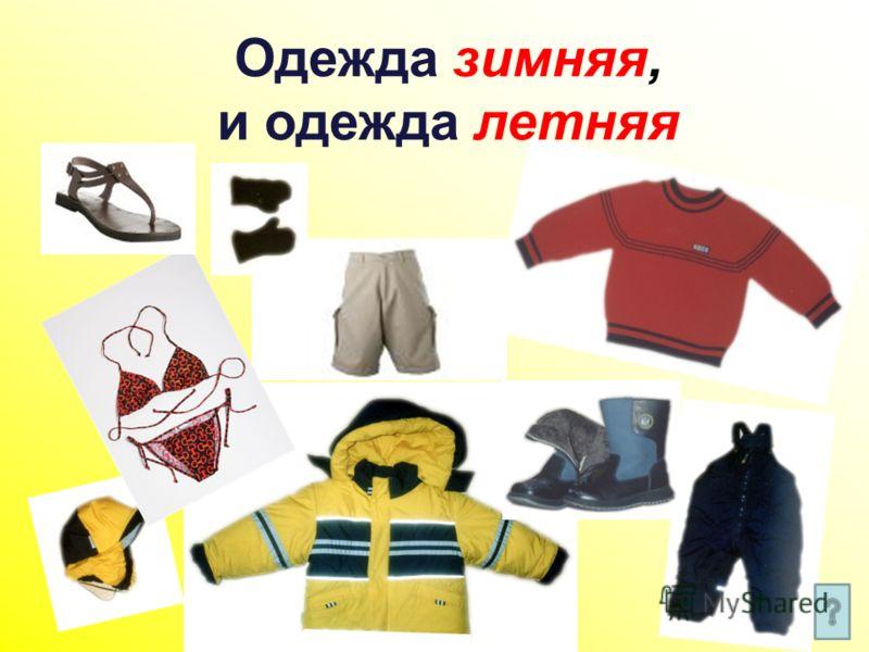 Одежда зимняя, и одежда летняя