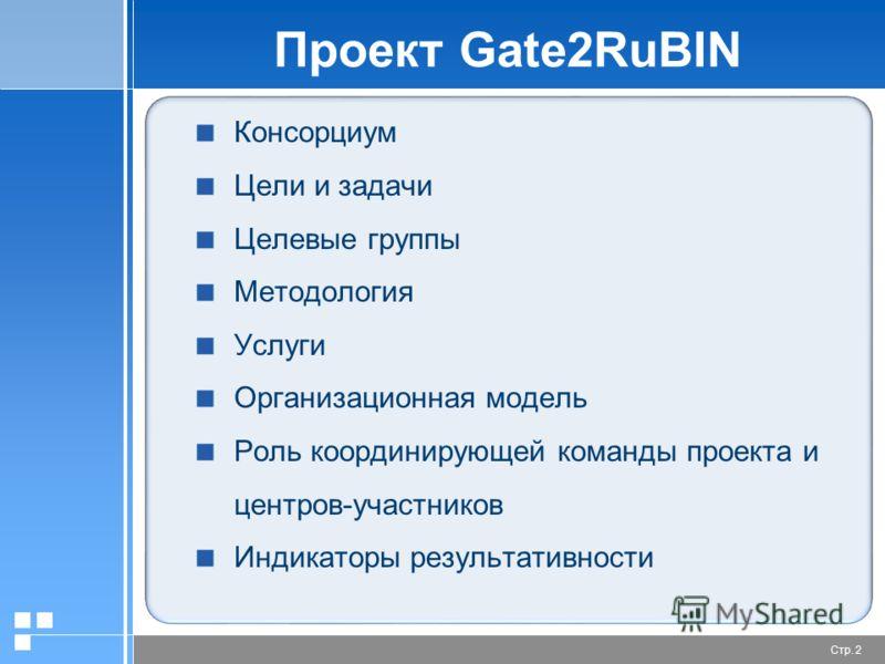 Стр. 2 Проект Gate2RuBIN Консорциум Цели и задачи Целевые группы Методология Услуги Организационная модель Роль координирующей команды проекта и центров-участников Индикаторы результативности