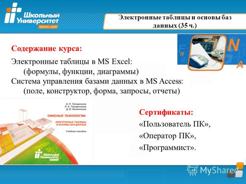 Электронные таблицы и основы баз данных (35 ч.) Сертификаты: «Пользователь ПК», «Оператор ПК», «Программист». Содержание курса: Электронные таблицы в MS Excel: (формулы, функции, диаграммы) Система управления базами данных в MS Access: (поле, констру