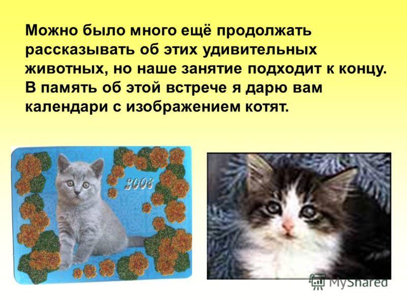 Можно было много ещё продолжать рассказывать об этих удивительных животных, но наше занятие подходит к концу. В память об этой встрече я дарю вам календари с изображением котят.