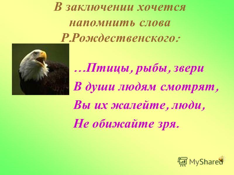 В з аключении х очется напомнить с лова Р. Рождественского : … Птицы, р ыбы, з вери В д уши л юдям с мотрят, Вы и х ж алейте, л юди, Не о бижайте з ря.