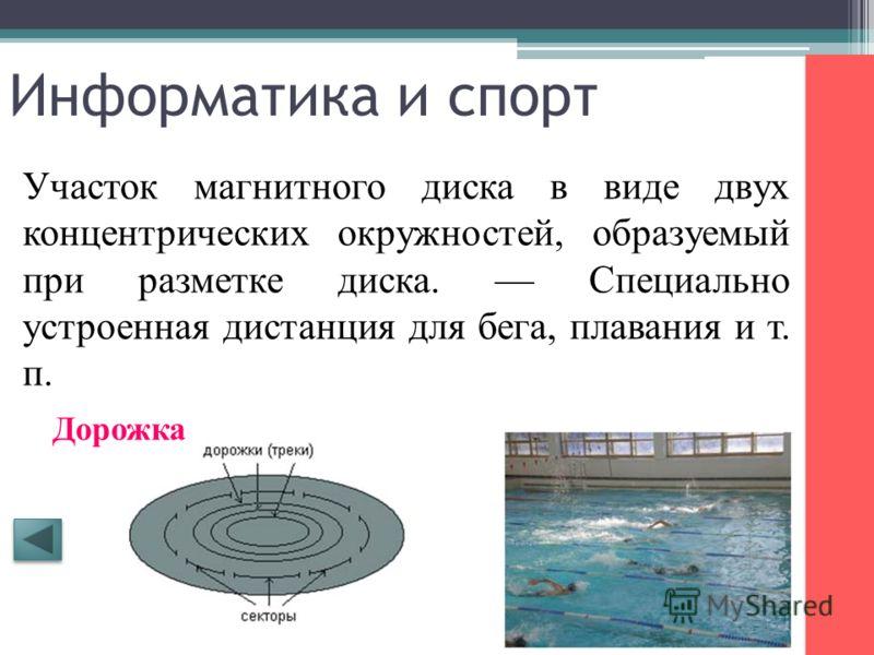 Информатика и спорт Разновидность носителя информации. Спортивный снаряд для метания. Диск