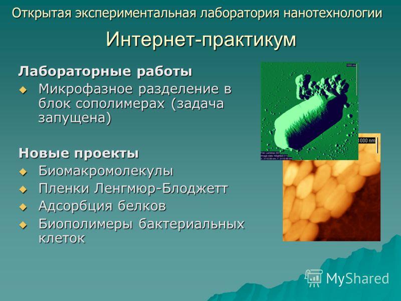 Интернет-практикум Лабораторные работы Микрофазное разделение в блок сополимерах (задача запущена) Микрофазное разделение в блок сополимерах (задача запущена) Новые проекты Биомакромолекулы Биомакромолекулы Пленки Ленгмюр-Блоджетт Пленки Ленгмюр-Блод