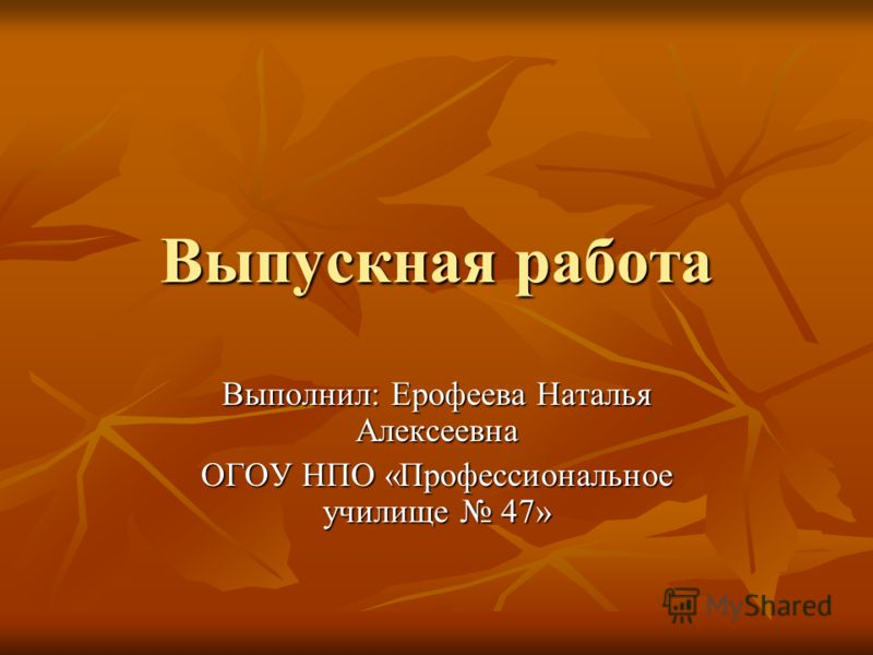 Выпускная работа Выполнил: Ерофеева Наталья Алексеевна ОГОУ НПО «Профессиональное училище 47»