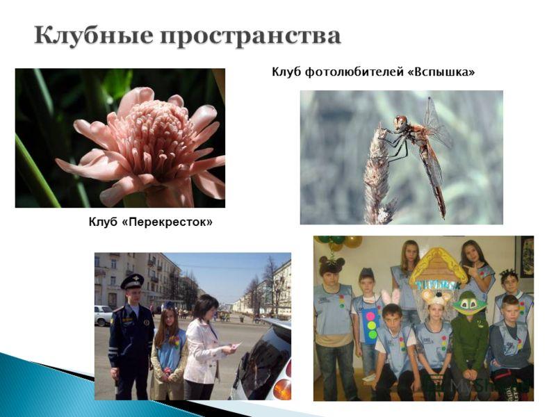 Клуб фотолюбителей «Вспышка» Клуб «Перекресток»
