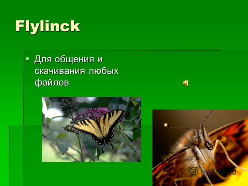 Flylinck Для общения и скачивания любых файлов Для общения и скачивания любых файлов