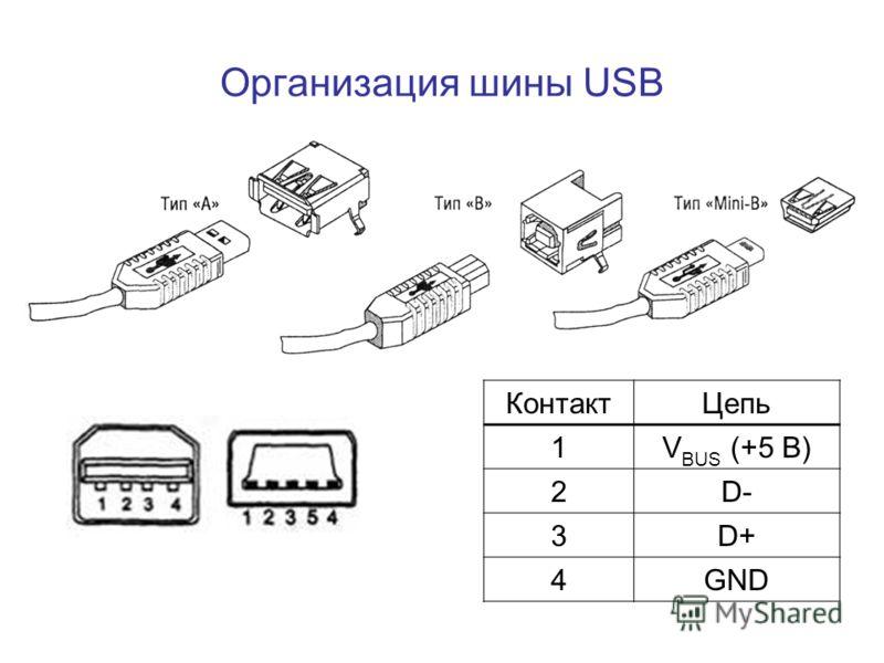 КонтактЦепь 1V BUS (+5 В) 2D- 3D+ 4GND