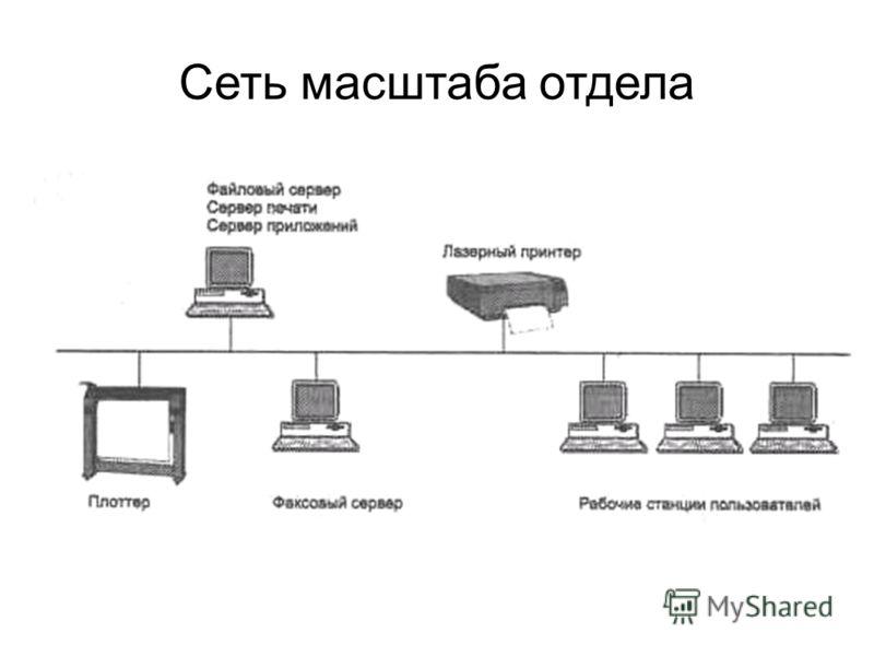 Сеть масштаба отдела