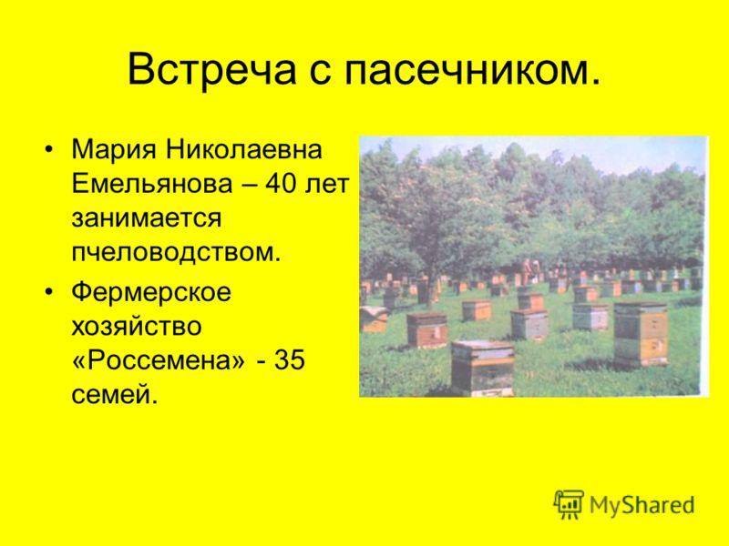 Встреча с пасечником. Мария Николаевна Емельянова – 40 лет занимается пчеловодством. Фермерское хозяйство «Россемена» - 35 семей.