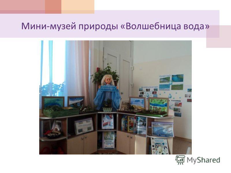 Мини - музей природы « Волшебница вода »