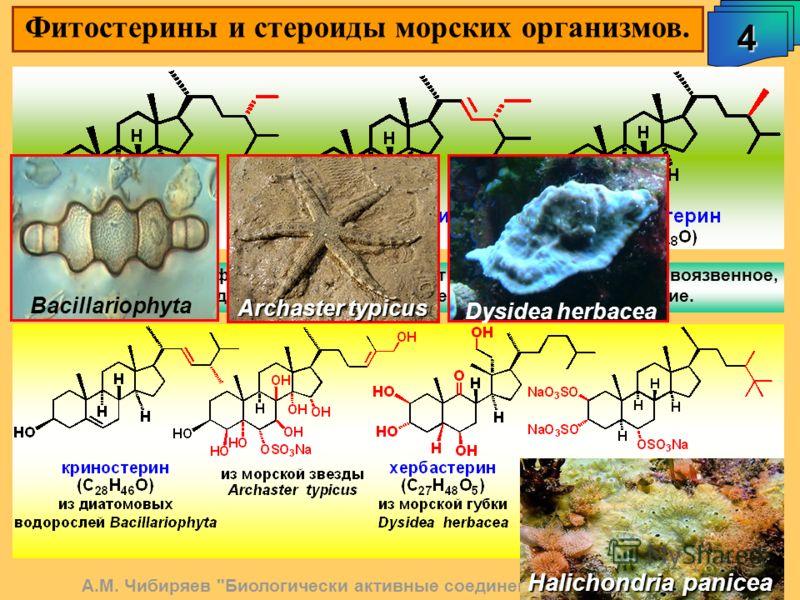 Фитостерины и стероиды морских организмов. А.М. Чибиряев