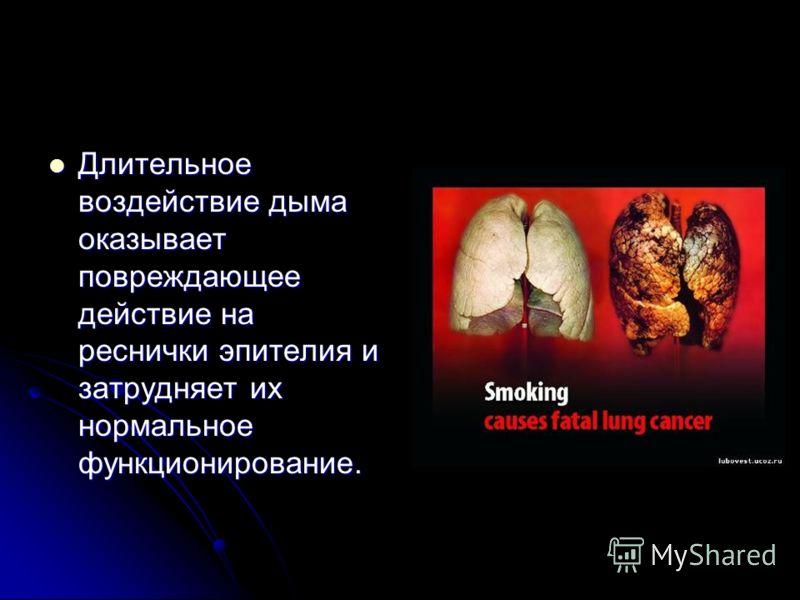 Длительное воздействие дыма оказывает повреждающее действие на реснички эпителия и затрудняет их нормальное функционирование. Длительное воздействие дыма оказывает повреждающее действие на реснички эпителия и затрудняет их нормальное функционирование
