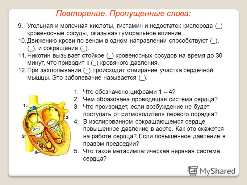 Повторение. Пропущенные слова: 9.Угольная и молочная кислоты, гистамин и недостаток кислорода (_) кровеносные сосуды, оказывая гуморальное влияние. 10.Движению крови по венам в одном направлении способствуют (_), (_), и сокращение (_). 11.Никотин выз