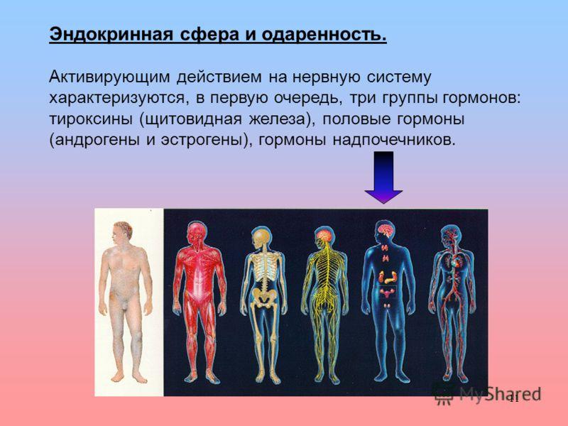 11 Эндокринная сфера и одаренность. Активирующим действием на нервную систему характеризуются, в первую очередь, три группы гормонов: тироксины (щитовидная железа), половые гормоны (андрогены и эстрогены), гормоны надпочечников.