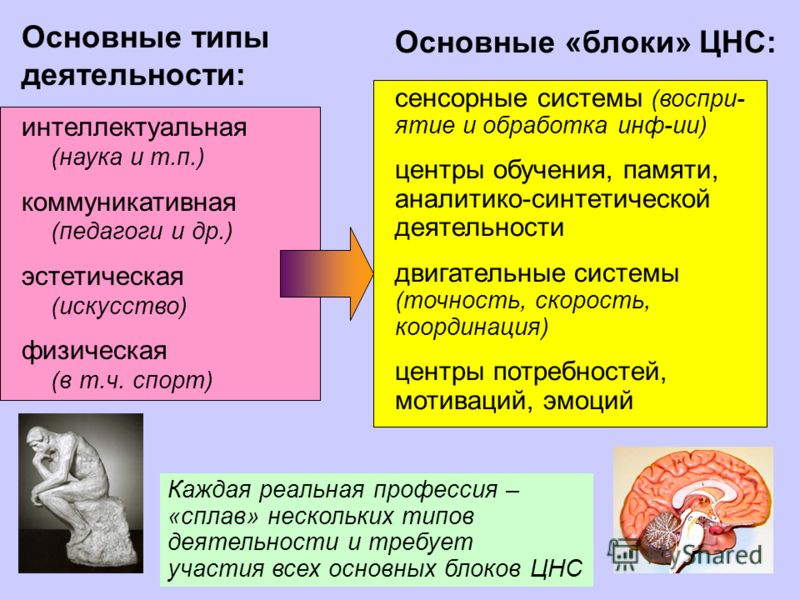 3 Основные типы деятельности: интеллектуальная (наука и т.п.) коммуникативная (педагоги и др.) эстетическая (искусство) физическая (в т.ч. спорт) Каждая реальная профессия – «сплав» нескольких типов деятельности и требует участия всех основных блоков