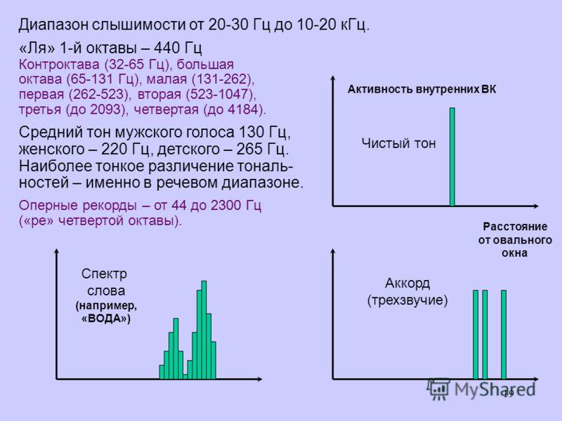 19 Активность внутренних ВК Расстояние от овального окна Чистый тон Аккорд (трехзвучие) Спектр слова (например, «ВОДА») Диапазон слышимости от 20-30 Гц до 10-20 кГц. «Ля» 1-й октавы – 440 Гц Контроктава (32-65 Гц), большая октава (65-131 Гц), малая (