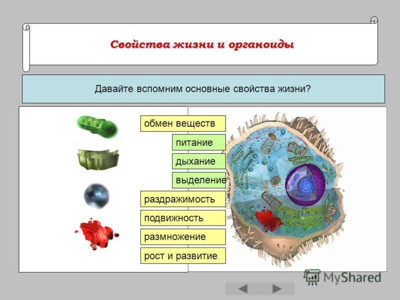 Свойства жизни и органоиды Свойства жизни и органоиды Давайте вспомним основные свойства жизни? обмен веществ питание дыхание выделение раздражимость подвижность размножение рост и развитие