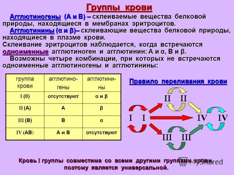 Агглютиногены (А и В) – склеиваемые вещества белковой природы, находящиеся в мембранах эритроцитов. Агглютинины (α и β)– склеивающие вещества белковой природы, находящиеся в плазме крови. Склеивание эритроцитов наблюдается, когда встречаются одноимен
