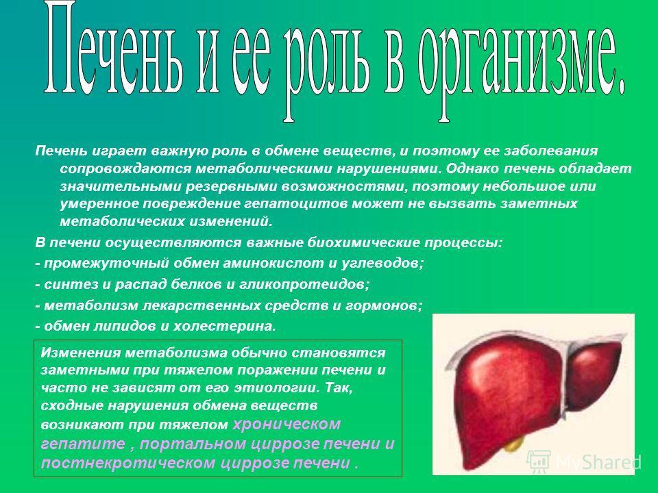 Печень играет важную роль в обмене веществ, и поэтому ее заболевания сопровождаются метаболическими нарушениями. Однако печень обладает значительными резервными возможностями, поэтому небольшое или умеренное повреждение гепатоцитов может не вызвать з
