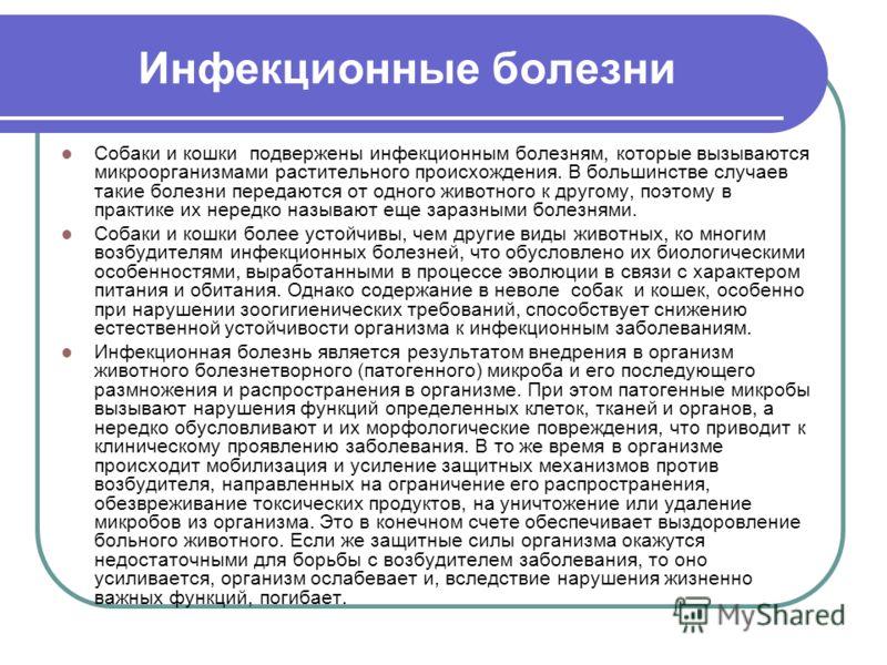 Инфекционные болезни собаки и кошки