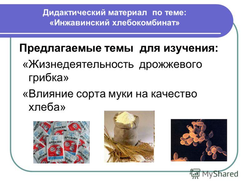 Дидактический материал по теме: «Инжавинский хлебокомбинат» Предлагаемые темы для изучения: «Жизнедеятельность дрожжевого грибка» «Влияние сорта муки на качество хлеба»