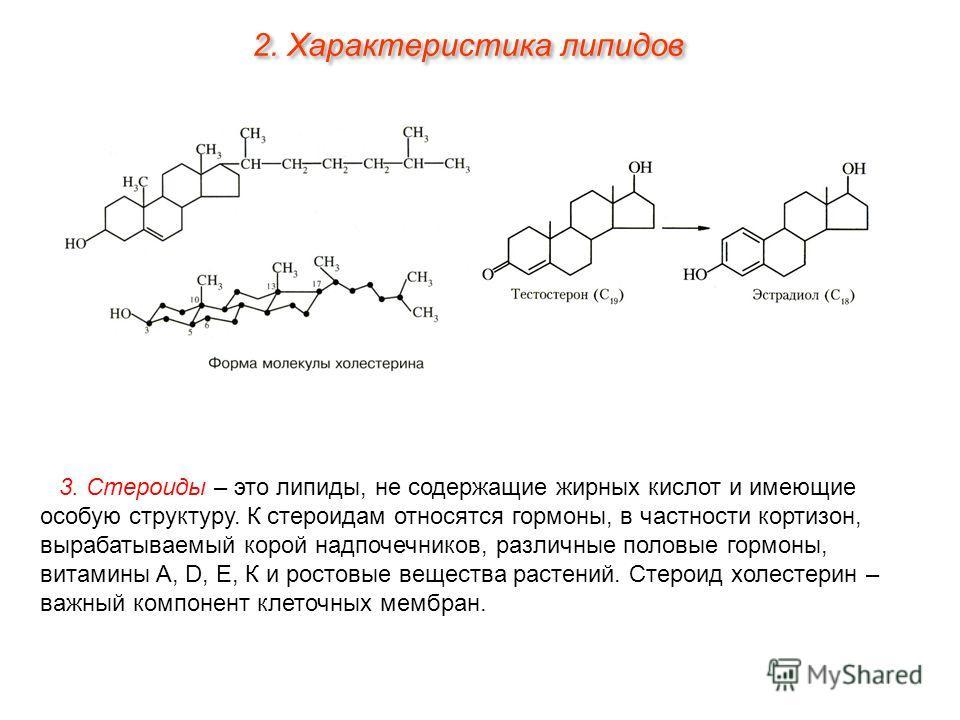 3. Стероиды – это липиды, не содержащие жирных кислот и имеющие особую структуру. К стероидам относятся гормоны, в частности кортизон, вырабатываемый корой надпочечников, различные половые гормоны, витамины A, D, Е, К и ростовые вещества растений. Ст