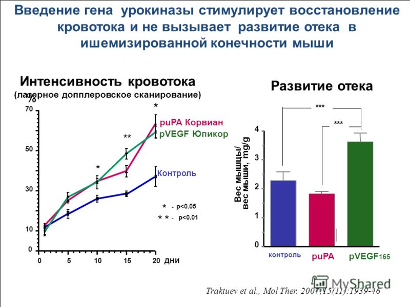 Контроль рuPA Корвиан рVEGF Юпикор * - p