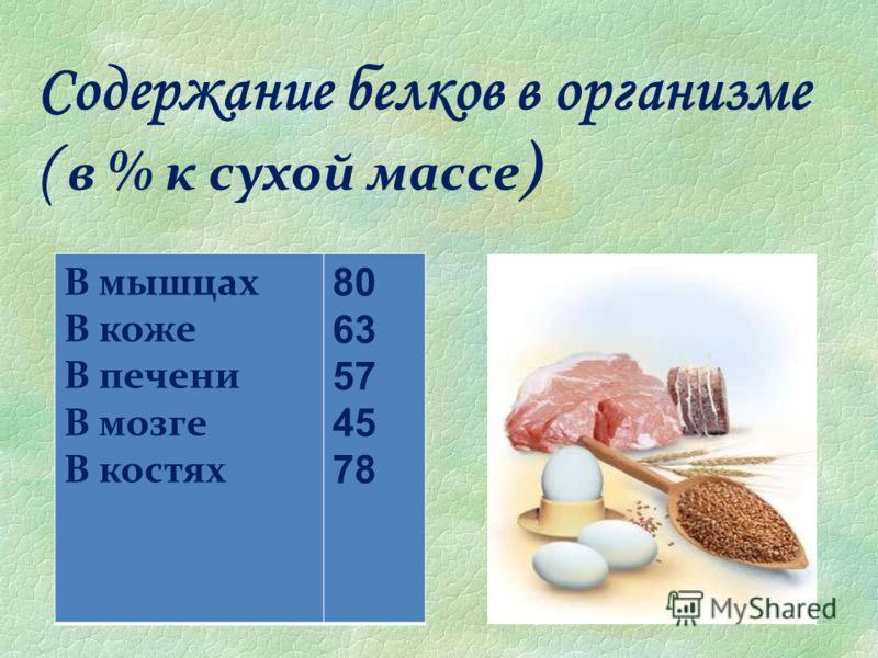 Содержание белков в организме ( в % к сухой массе ) В мышцах В коже В печени В мозге В костях 80 63 57 45 78
