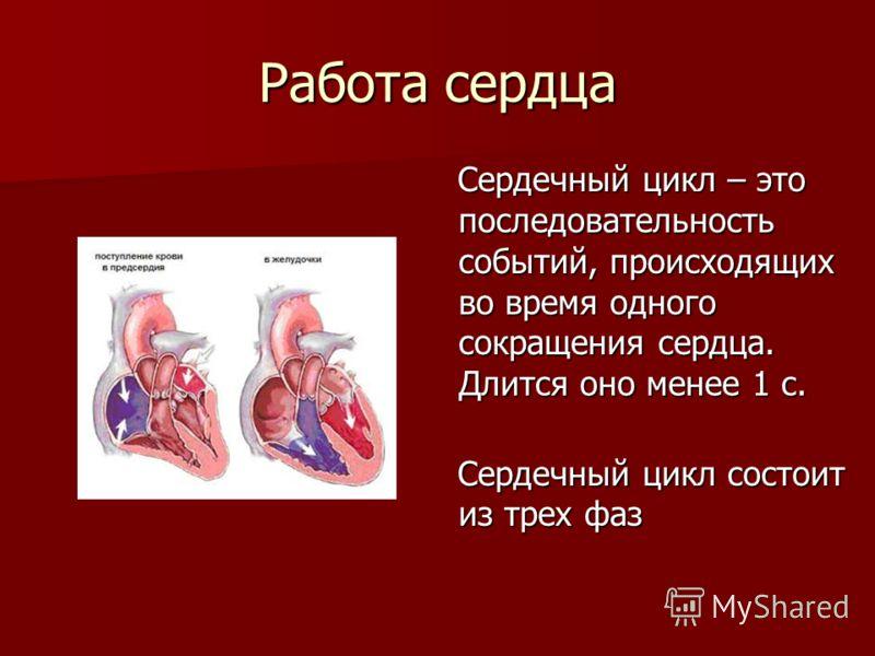 Работа сердца Сердечный цикл – это последовательность событий, происходящих во время одного сокращения сердца. Длится оно менее 1 с. Сердечный цикл – это последовательность событий, происходящих во время одного сокращения сердца. Длится оно менее 1 с