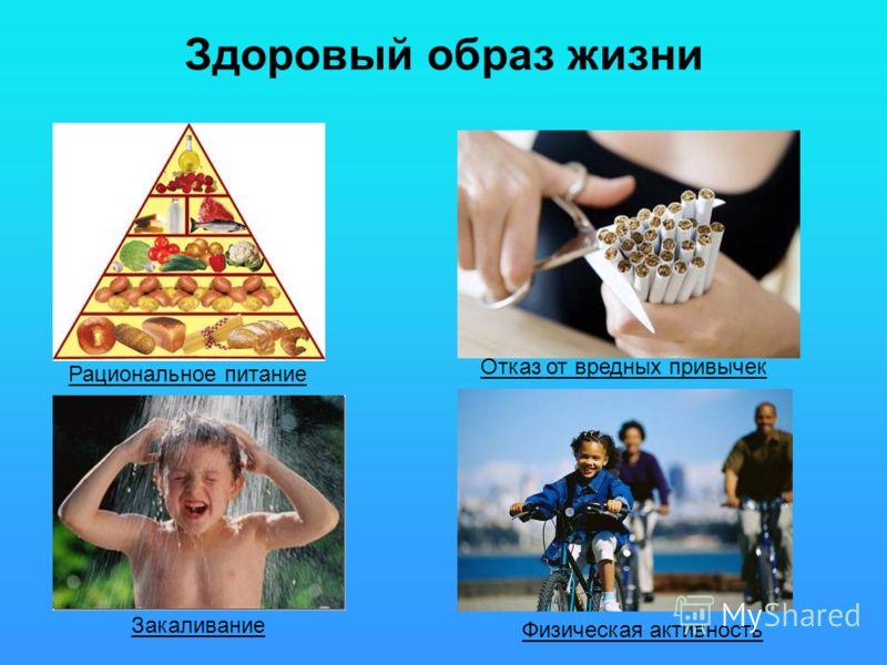 Здоровый образ жизни Физическая активность Рациональное питание Закаливание Отказ от вредных привычек
