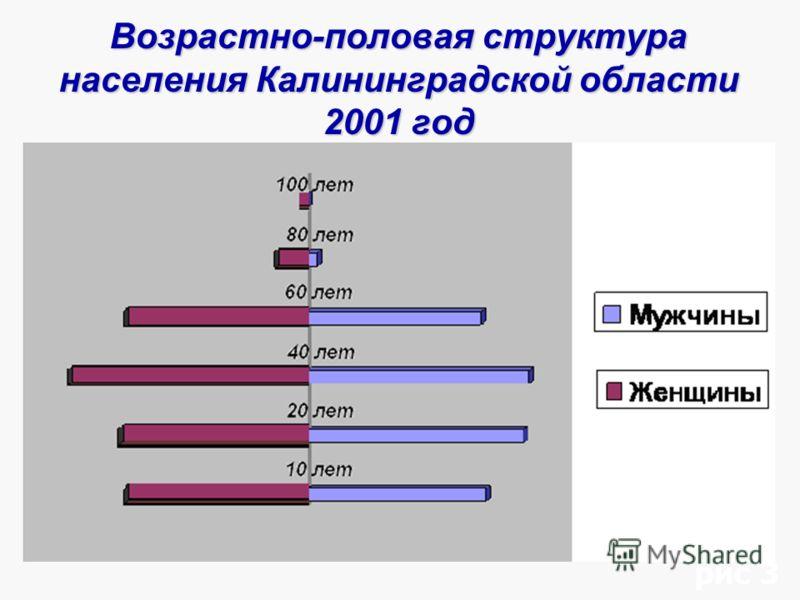 Возрастно-половая структура населения Калининградской области 2001 год рис 3