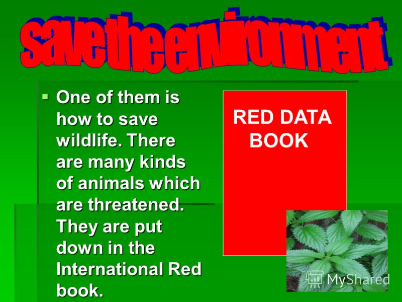 One of them is how to save wildlife. There are many kinds of animals which are threatened. They are put down in the International Red book. One of them is how to save wildlife. There are many kinds of animals which are threatened. They are put down i