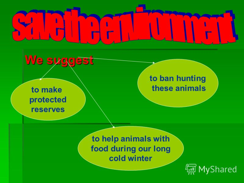 We suggest to ban hunting these animals to make protected reserves to help animals with food during our long cold winter
