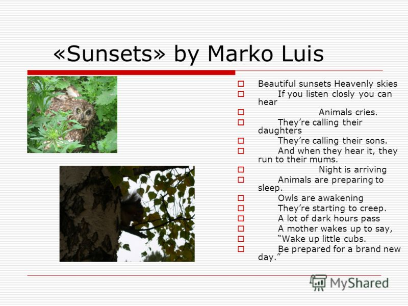 «Sunsets» by Marko Luis Beautiful sunsets Heavenly skies If you listen closly you can hear Animals cries. Theyre calling their daughters Theyre calling their sons. And when they hear it, they run to their mums. Night is arriving Animals are preparing