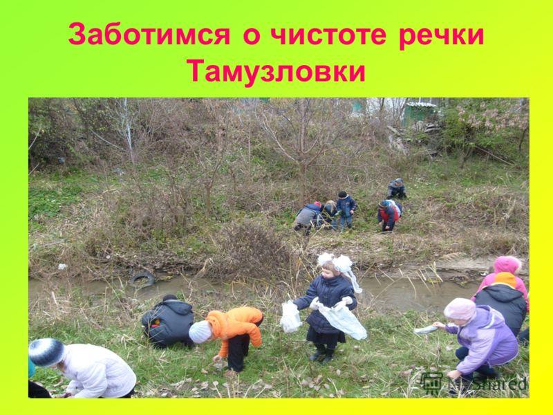 Заботимся о чистоте речки Тамузловки