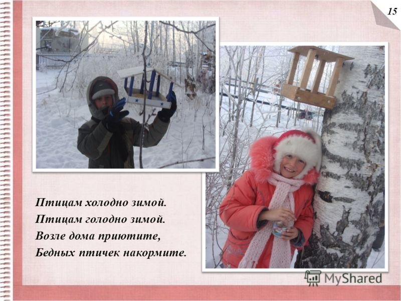 Птицам холодно зимой. Птицам голодно зимой. Возле дома приютите, Бедных птичек накормите. 15