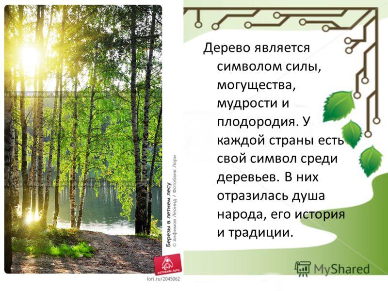 Дерево является символом силы, могущества, мудрости и плодородия. У каждой страны есть свой символ среди деревьев. В них отразилась душа народа, его история и традиции.