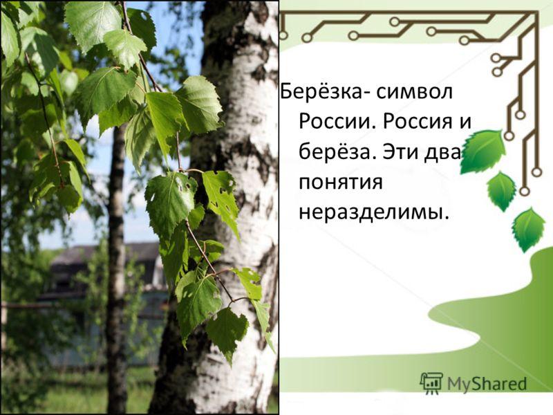 Берёзка- символ России. Россия и берёза. Эти два понятия неразделимы.