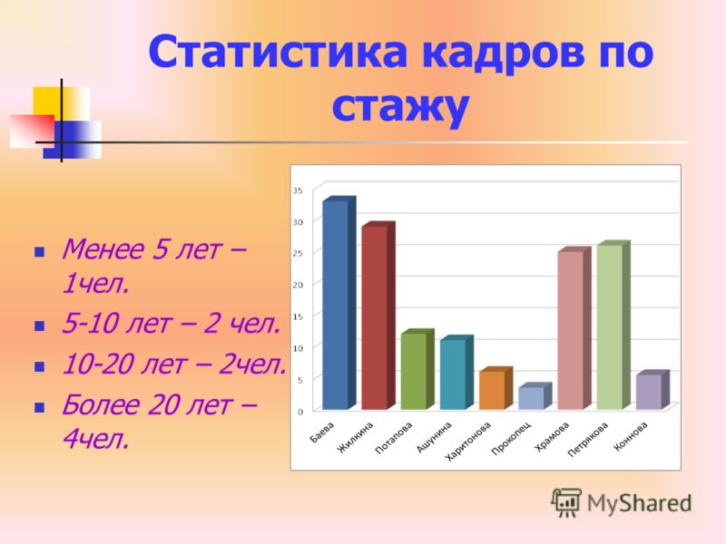 Статистика кадров по стажу Менее 5 лет – 1чел. 5-10 лет – 2 чел. 10-20 лет – 2чел. Более 20 лет – 4чел.