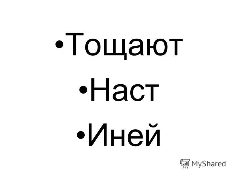 Тощают Наст Иней