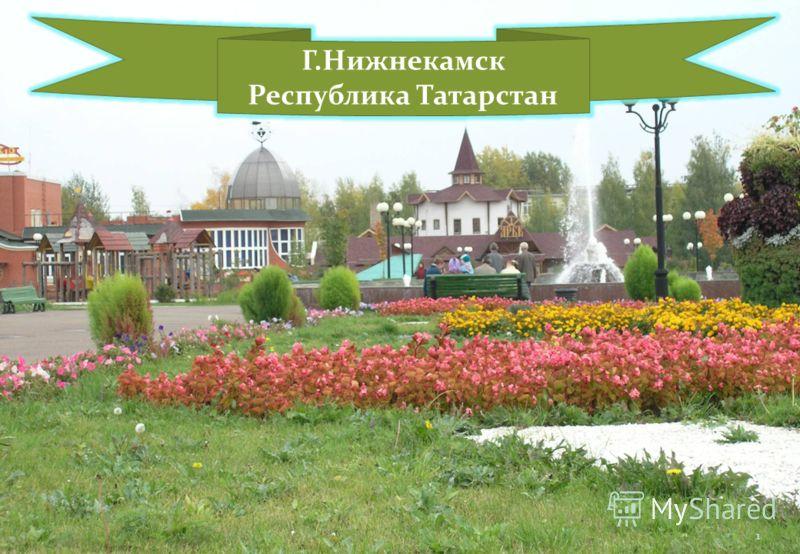 Г.Нижнекамск Республика Татарстан 1