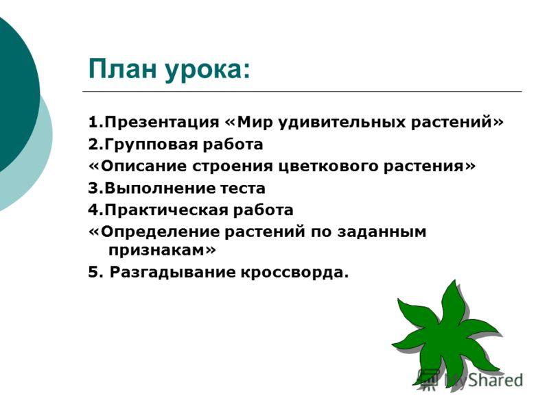 План урока растения