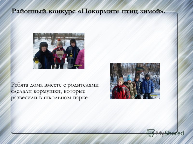 Районный конкурс «Покормите птиц зимой». Ребята дома вместе с родителями сделали кормушки, которые развесили в школьном парке