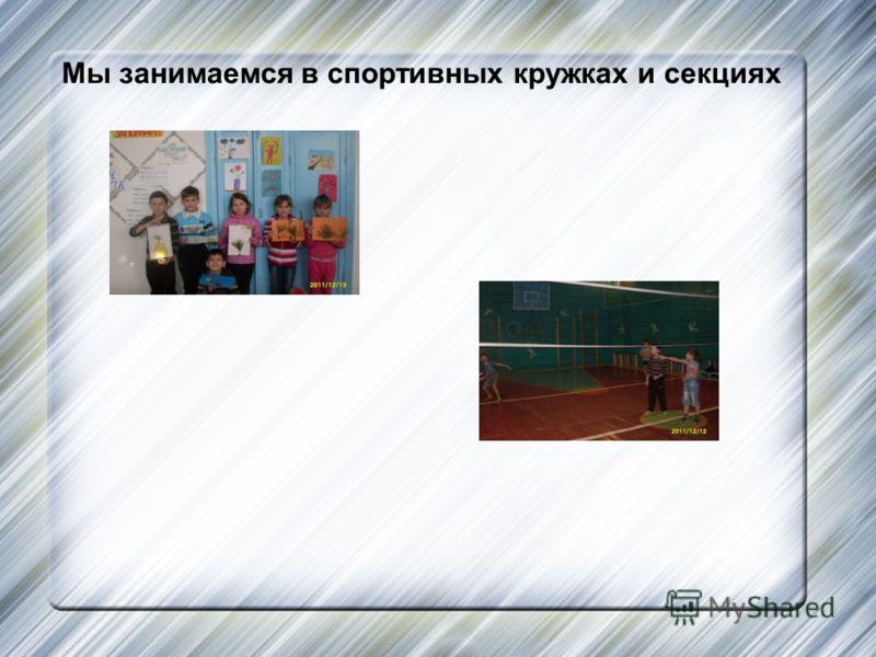 Мы занимаемся в спортивных кружках и секциях